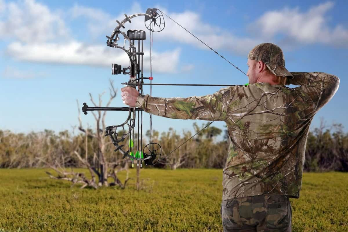 Man hunting with a compound bow - What Are the Different Types of Archery Bows